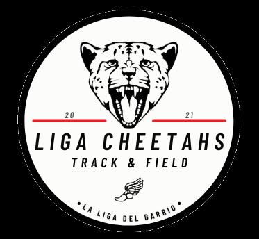 Circle Liga Cheetahs Logo (1)